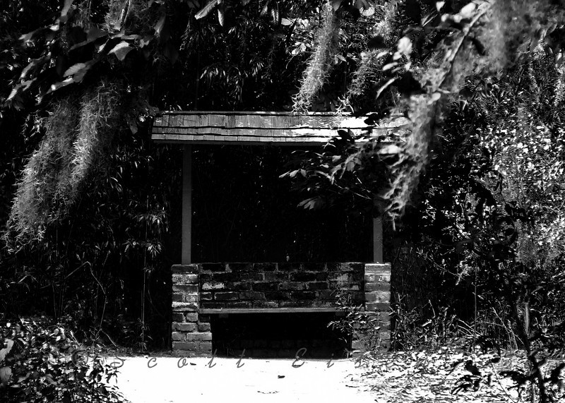 Lonely old bench on a South Carolina plantation