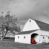 Red Truck and White Barn 1618 w33