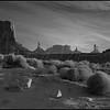 Artist's Point - Monument Valley  82708   w22