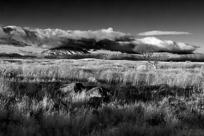 Northern California Landscape at Klamath Basin, near Lava Beds National Monument, Tulelake, CA.