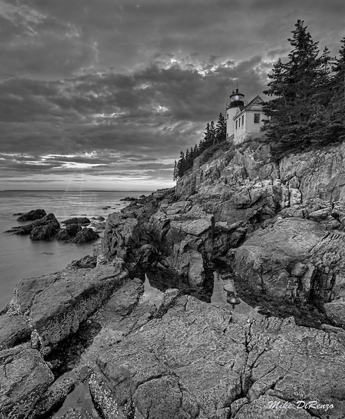 Bass Harbor Cliffside 9761 w63