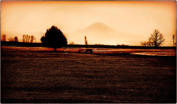 Misty Morning, Mt. Rainier, Kent Valley Washington