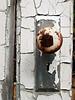 Doorknob and peeling paint on an abandoned farmstead near Soledad in the Gavilan Mountain Range, California.  2007