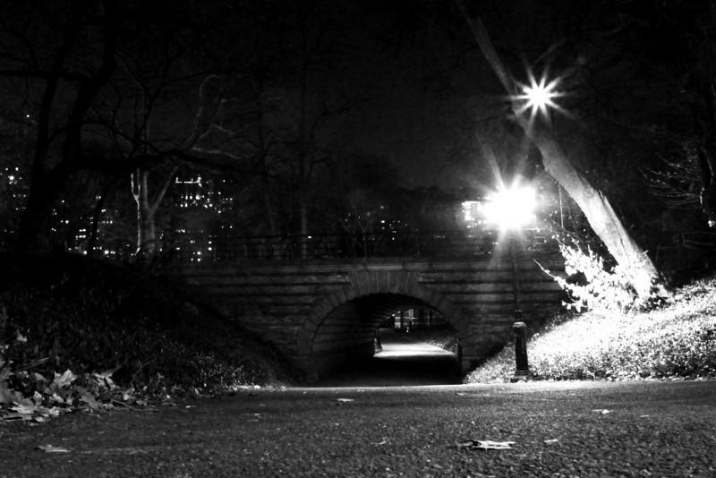 Central Park - NYC NY