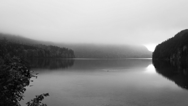 Lake and the Fog