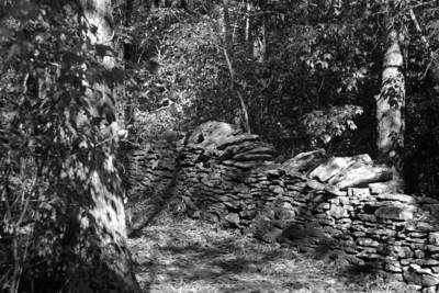 Raven Run Wall 2