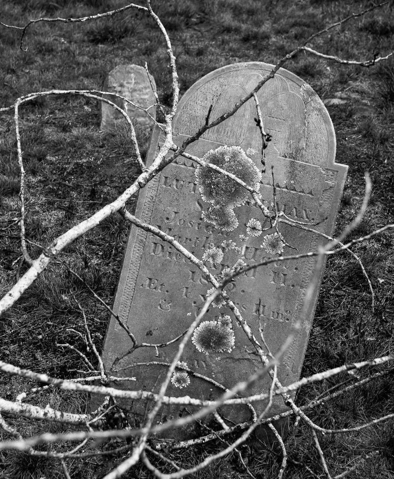 Death's dry clutches - the dead tree just makes this photo of a head and footstone in Longfellow Cemetery, Auburn NH