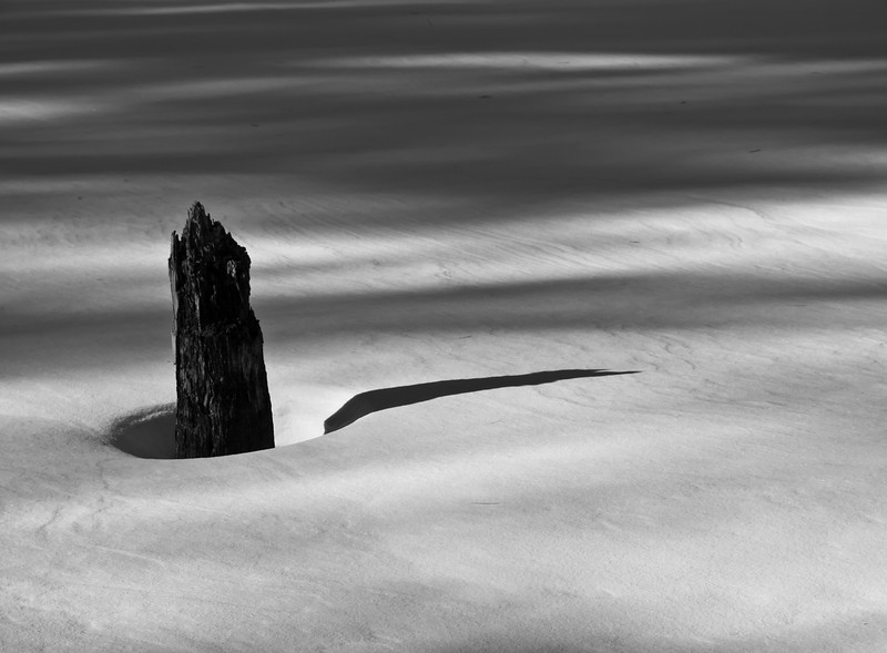Morning shadows on a frozen pond.