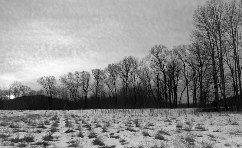 Cold Sunrise<br /> in a field near the Pemigewasset river.  It wasn't spectacular, so I decided to go for bleak.