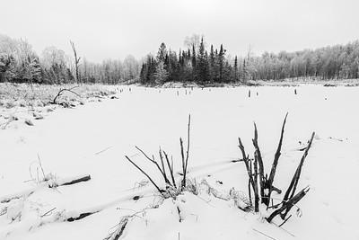 The stark realities of winter