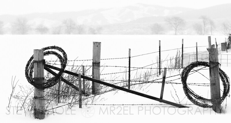 Winter, Wire, and Wood II