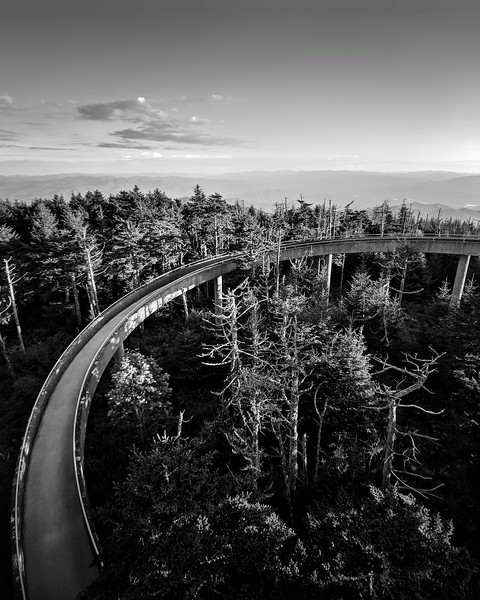 Clingmans Dome, NC.
