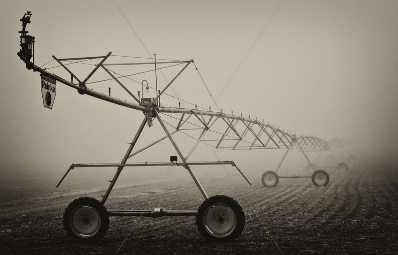 Pivot in the Mist