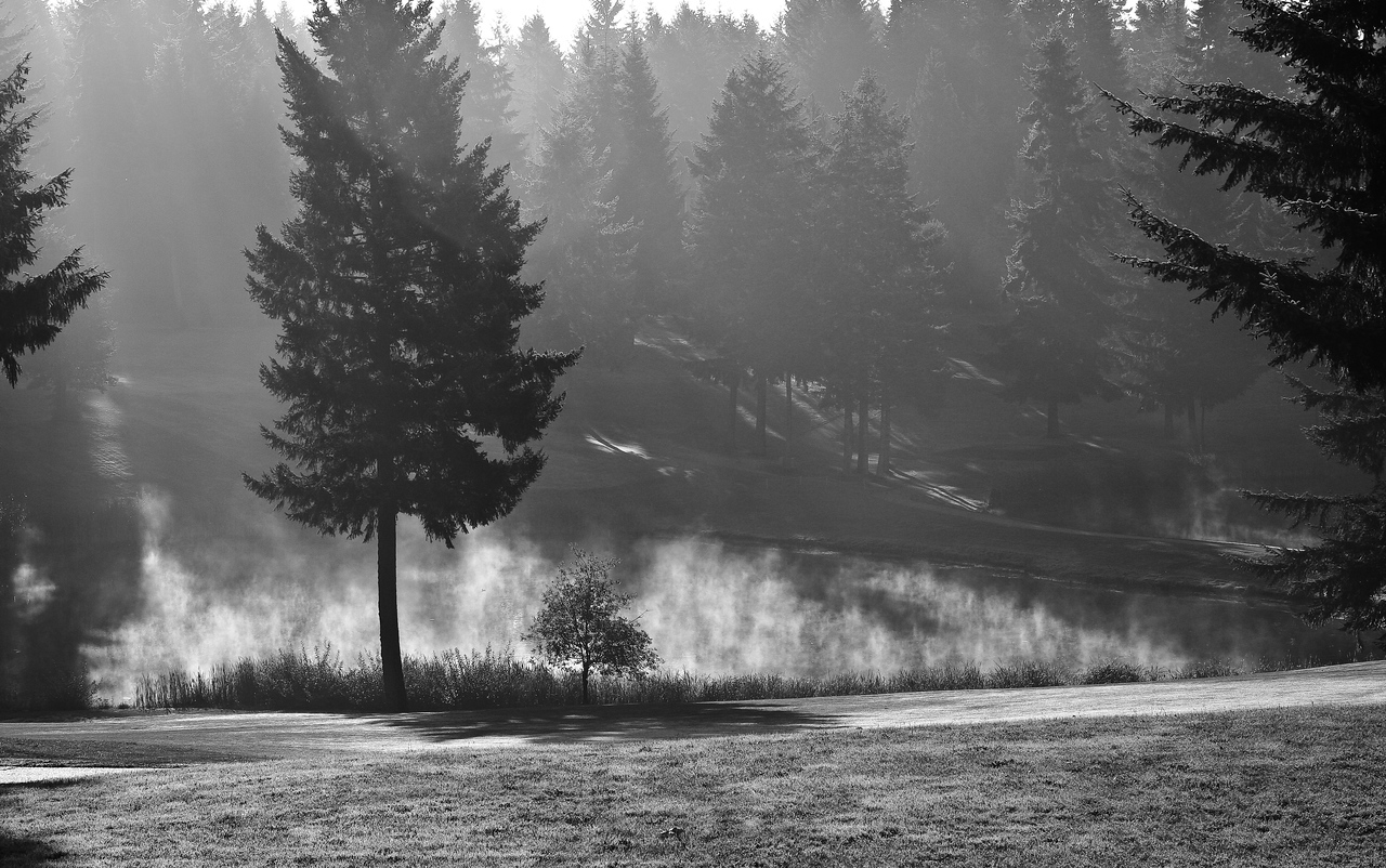 Canterwood Golf b&w edit