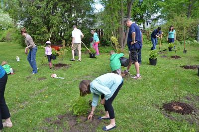 BCA Tree Planting