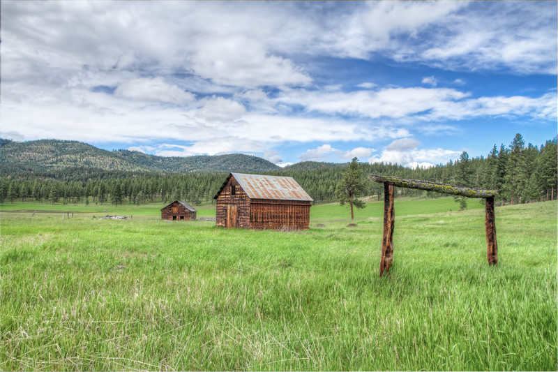 A Hitch In Time -Potomac, Montana