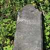 Chas R Fortune grave
