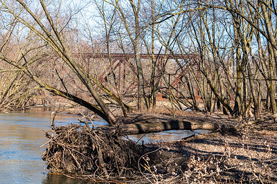 Beaver Creek Access