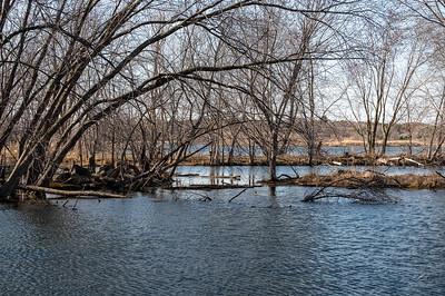 Beaver Valley Wetland Wildlife Refuge