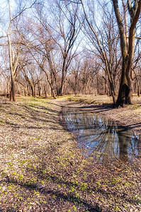 Black Hawk Creek Greenbelt