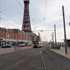 46. Centenary car 648 and the Tower