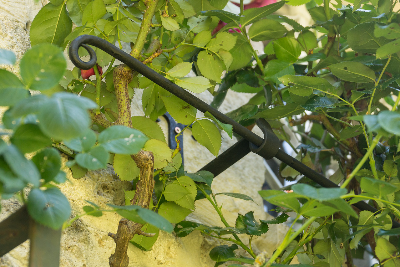 Closeup of one of the brackets.  Bar is removable.