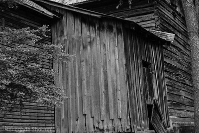 b-w old building-2