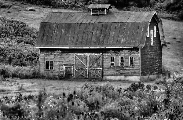 b-w barn double doors