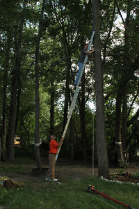 Blake Cutting down Trees