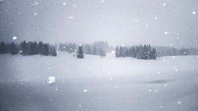 Un poème qui tombe des nuages en flocons blancs et légers. Ce poème vient de la bouche du ciel, de la main de Dieu. Il porte un nom. Un nom d'une blancheur éclatante. Neige.  - Maxence Fermine -