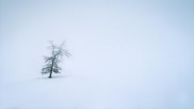 Solitude d'hiver...