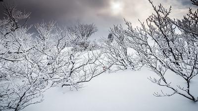 Amour, ange de neige et visage au yeux clos ...