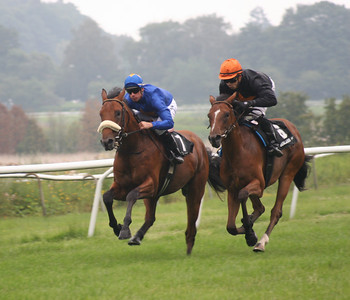 The best - Horseracing