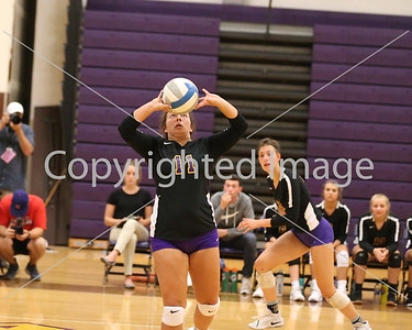 Blissfield's Abbey Fisher with the set