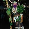 Night Elf Druid