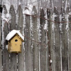 Here a lone bird house sits on a fence during the Blizzard on Forrest Street in Dunstable. Nashoba Valley Voice Photo by David H.Brow
