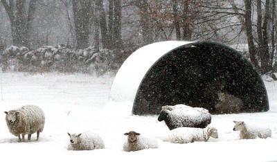 Blizzard strikes Nashoba Valley
