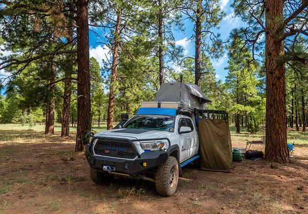 Kinnikinick Lake Area, Coconino National Forest, Coconino County, Arizona USA