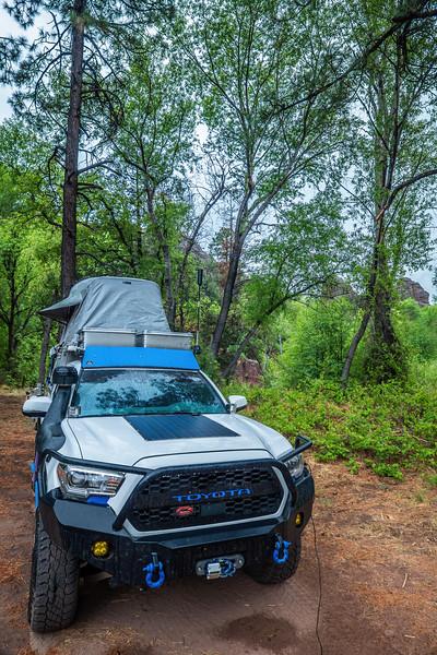 campsite. Blue Wilderness, Greenlee County, Arizona USA