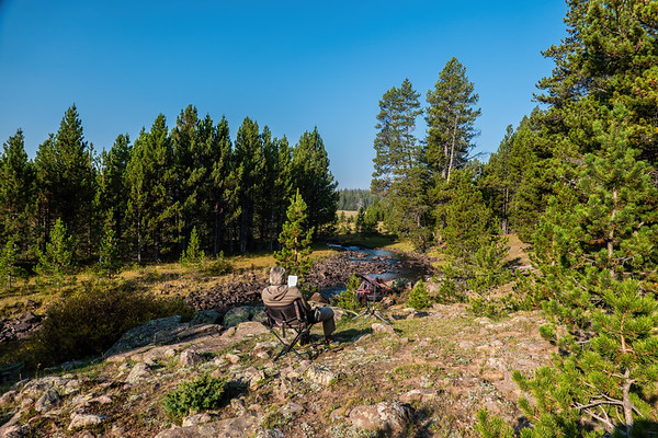Trout Creek, Ashley National Forest, Uintah County, Utah USA