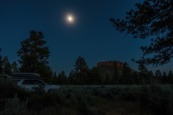 campsite. Bears Ears, Bears Ears National Mounument, Manti La Sal National Forest, San Juan Co., Utah USA