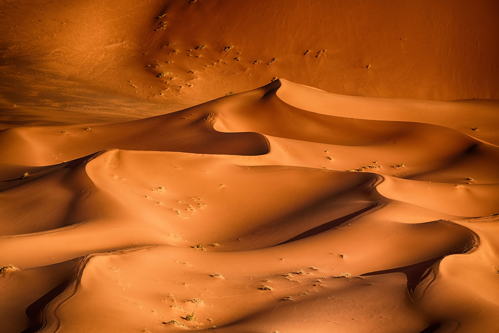 Erg Chebbi Sand Dunes in the Sahara Desert of Morocco - copyright Andy Yee