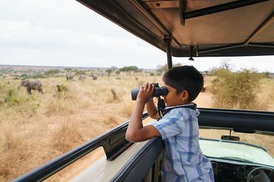 Tarnagire National Park, Tanzania