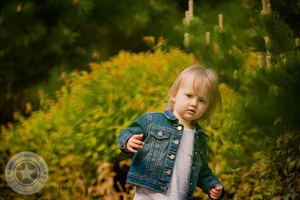 new west family portraits by Sara Paley Photography
