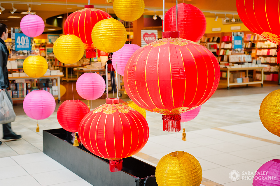 Sara Paley Photography: Burnaby portrait photographer at Lougheed Town Centre with Greenscape Design & Decor @sarapaleyphoto #paleypix #portraitphotography #vancouver #lantern #chinesenewyear #vancouverphotographer #burnabyphotographer #burnaby #lougheedlunar #holidaydecor #decor #lougheedtowncentre @greenscapedesign @GreenscapeVan @LTCshopping