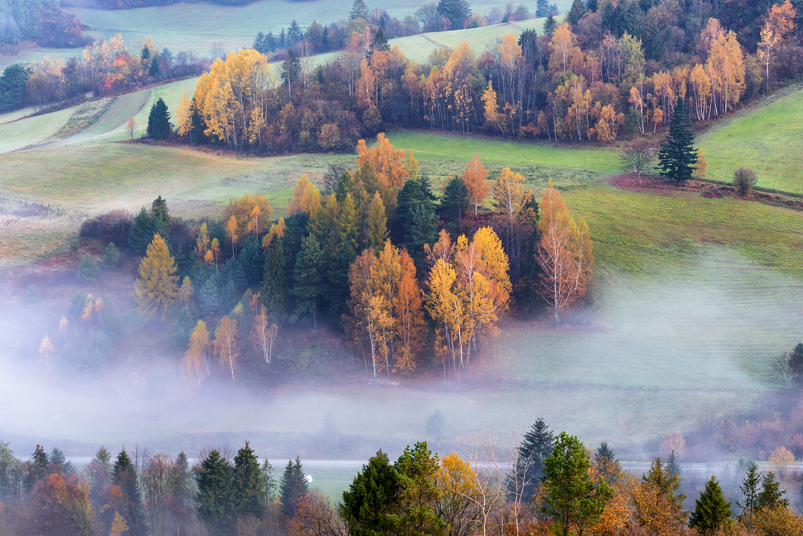 pieniny, national park, slovakia, autumn, threes
