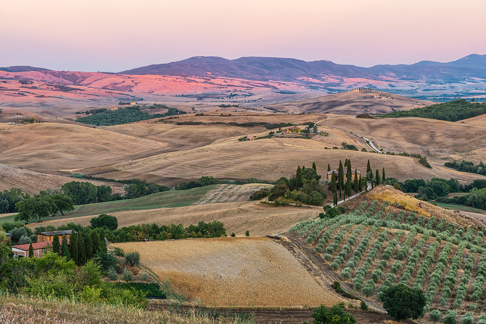 Tuscany, italy, sunset, vineyards, threes, hdr, country