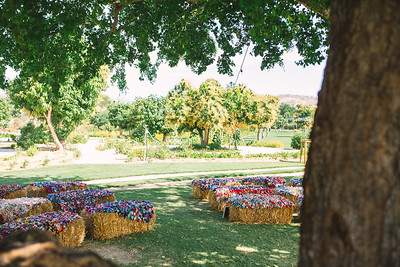 004-flora-farms-wedding-san-jose-del-cabo-mexico-funkytown-photography