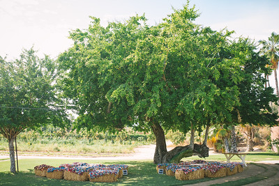 001-flora-farms-wedding-san-jose-del-cabo-mexico-funkytown-photography