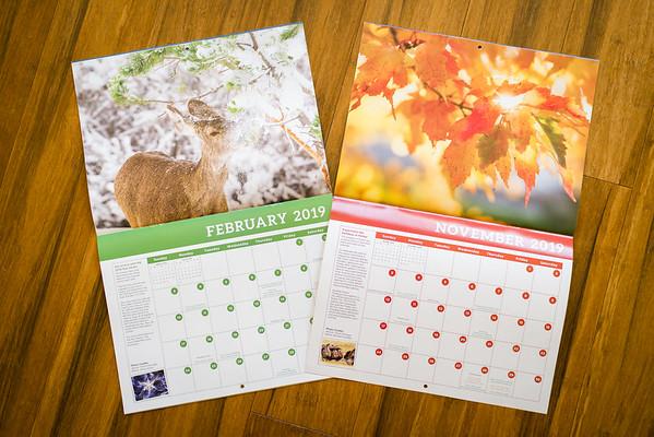 Parker 2019 Calendar